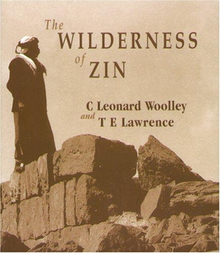 Image for The Wilderness of Zin