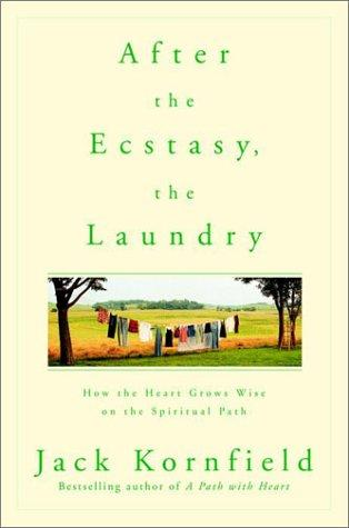 Download After the Ecstasy, the Laundry
